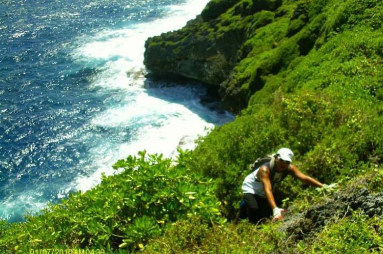 Guam Boonie Stompers 1