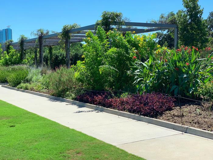 McGovern Centennial Gardens 1
