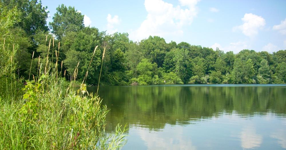 Fishing on the lakes in Allen County