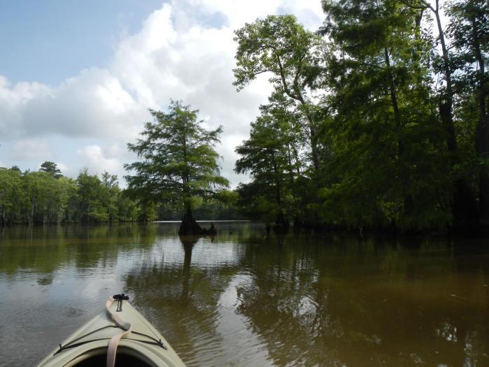 Kayaking in Beaumont