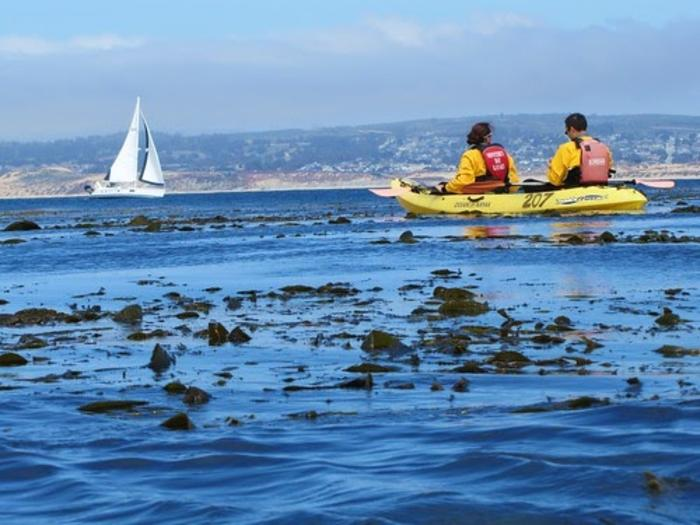Sailboat and Kayakers on Monterey Bay