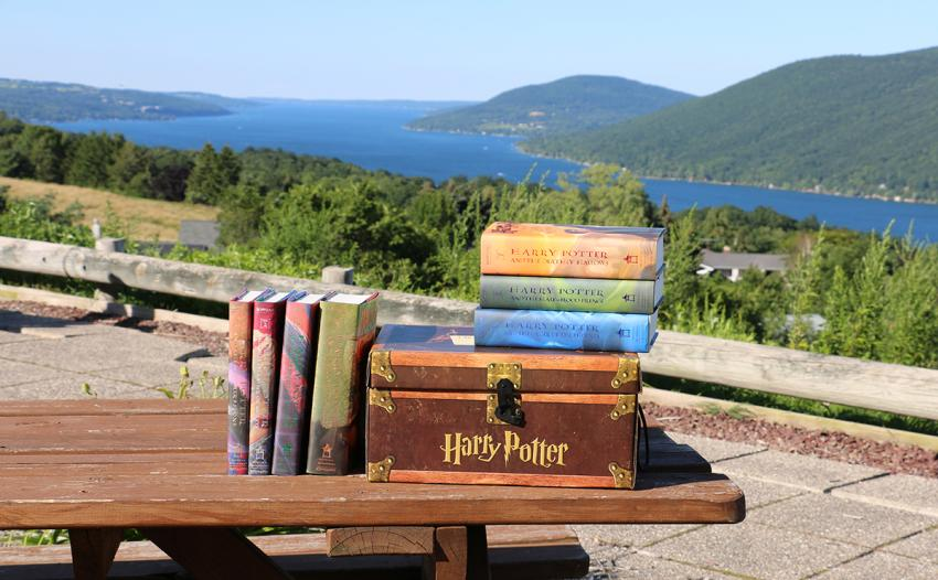 Harry Potter collection at the County Road 12 overlook