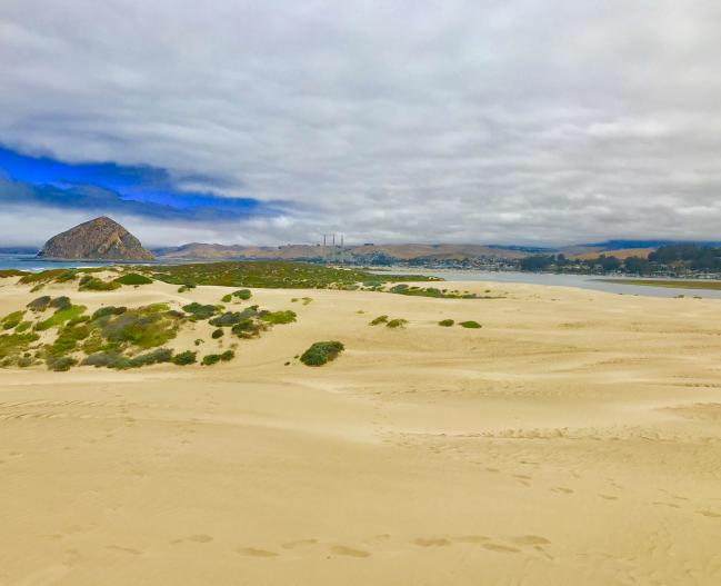 Sandspit dunes