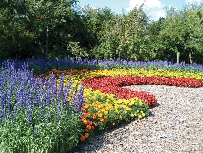 Klehm Arboretum Rainbow Garden