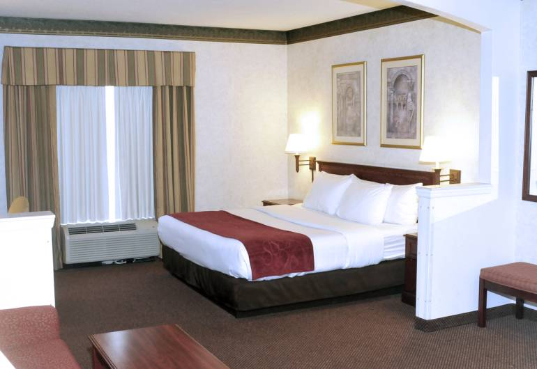 Comfort Suites Newark (Downtown)