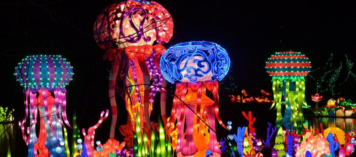 chinese lantern festival hbg