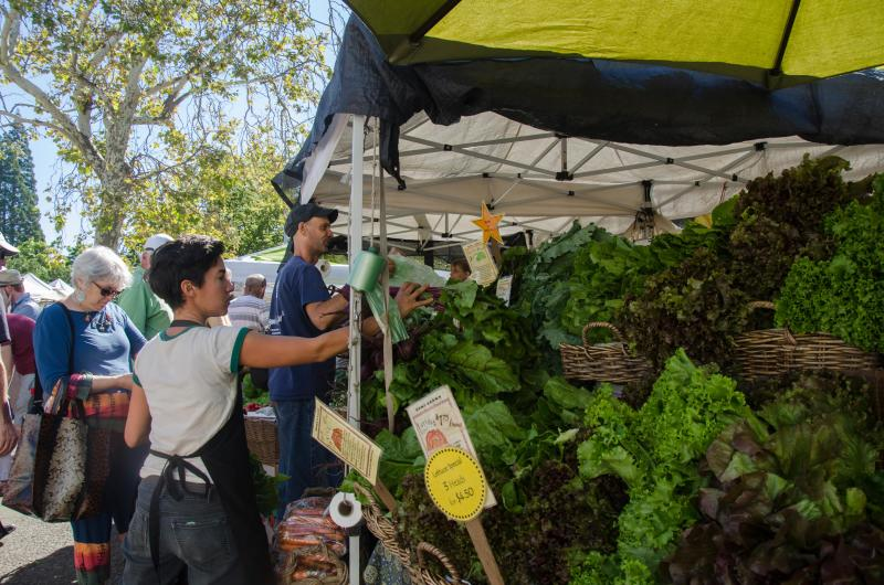 Farm Stand at Lane County Farmers Market by Katie McGuigan