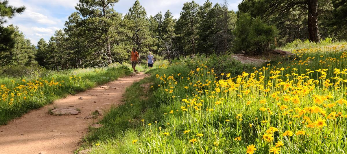 People Hiking Shanahan Ridge Trail