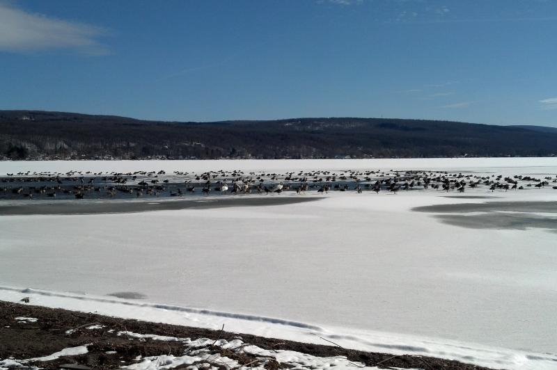 honeoye-lake-honeoye-winter
