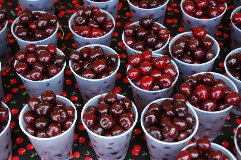 Juicy Summer Cherries in clear plastic cups