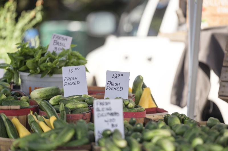 Freshly-picked vegetables at the Sara Hardy Farmers Market in Downtown Traverse City