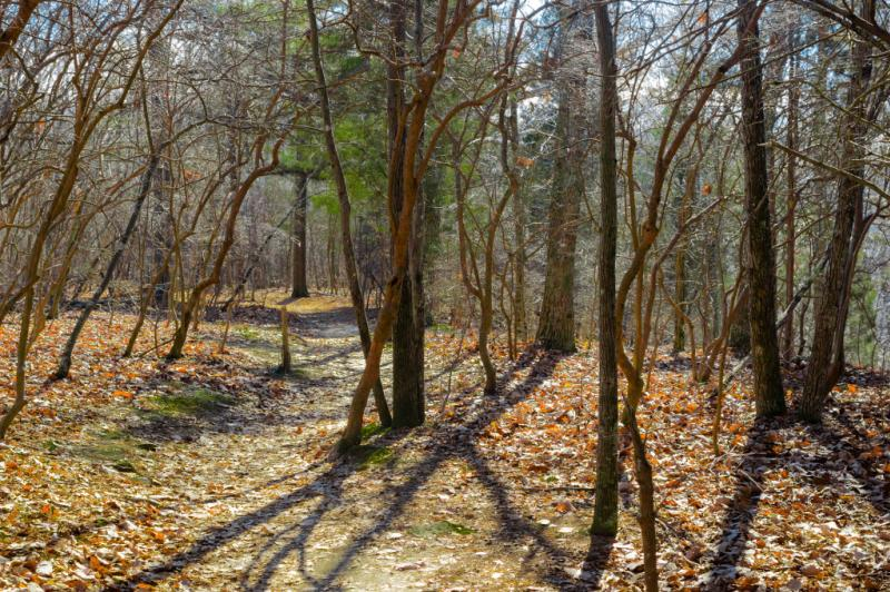 South Plateau Loop, Monte Sano State Park