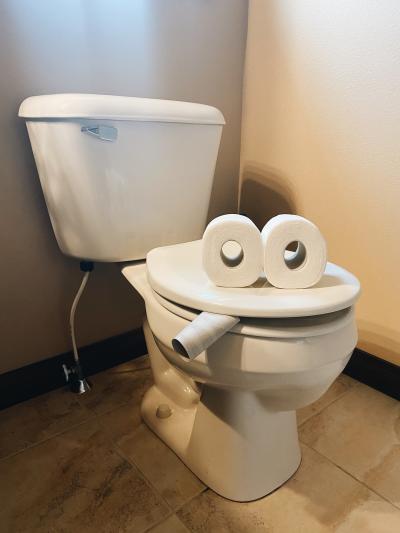 Smoking Toilet