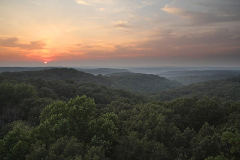View of the Charles C. Deam Wilderness from the Hickory Ridge Lookout Tower near Bloomington, IN