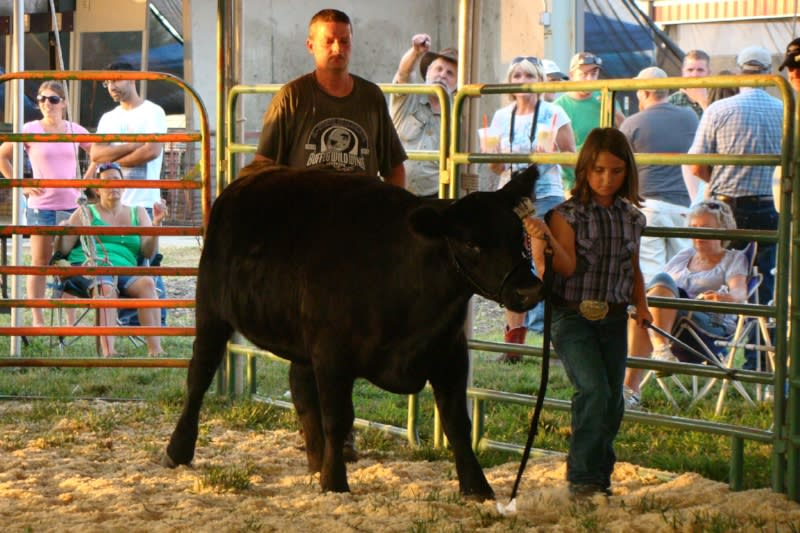 Wyandotte County Fair