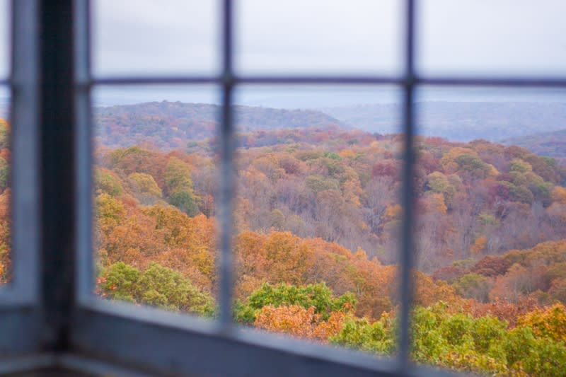 Fall foliage from Fire Tower
