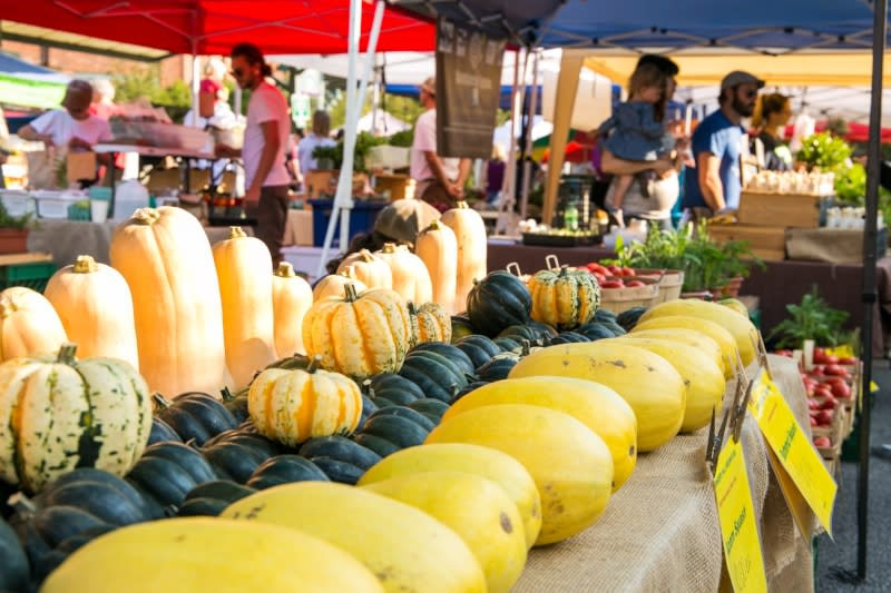 Pumpkins and squash at Bloomington's Farmers Market