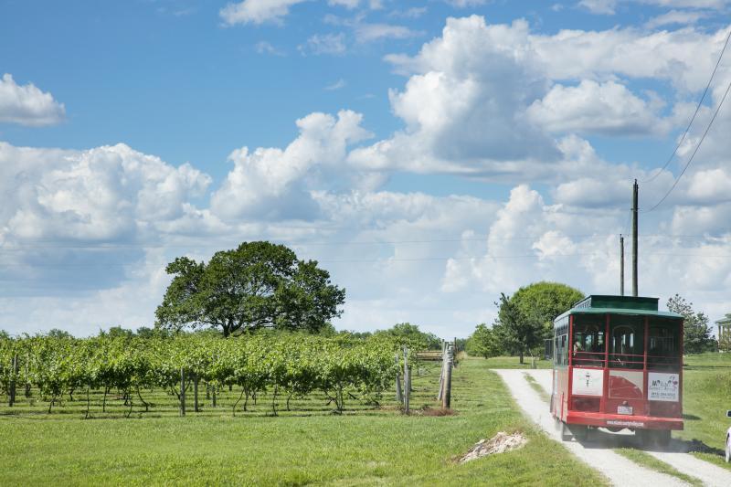 Miami County Trolley