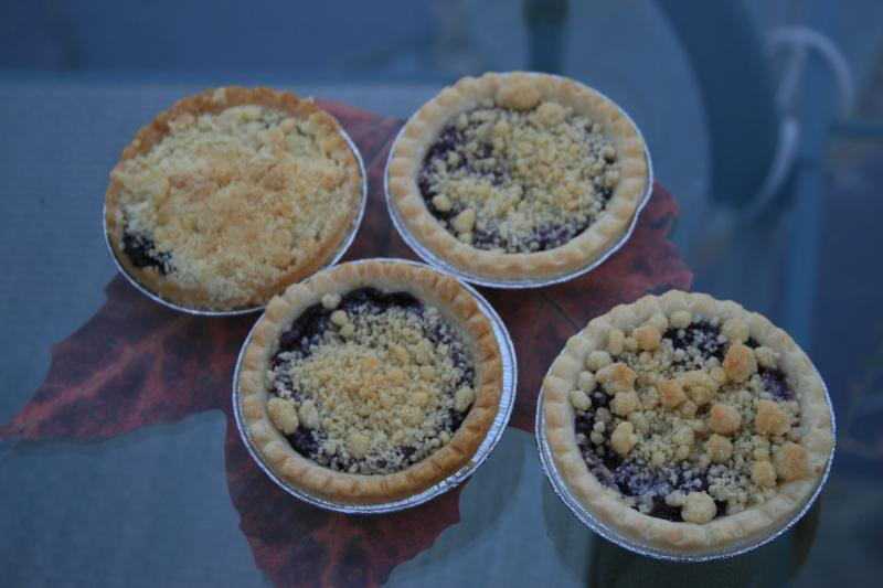 grape-pie-tarts