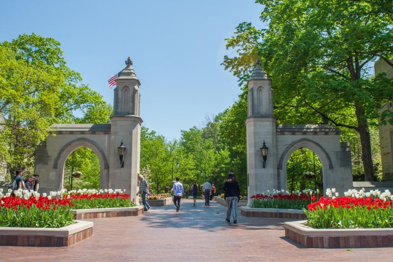 Sample Gates Tulips
