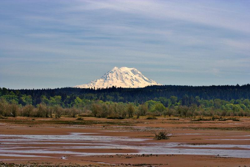 A stunning view of Mount Rainier from low tide at Billy Frank Jr. Nisqually National Wildlife Refuge.