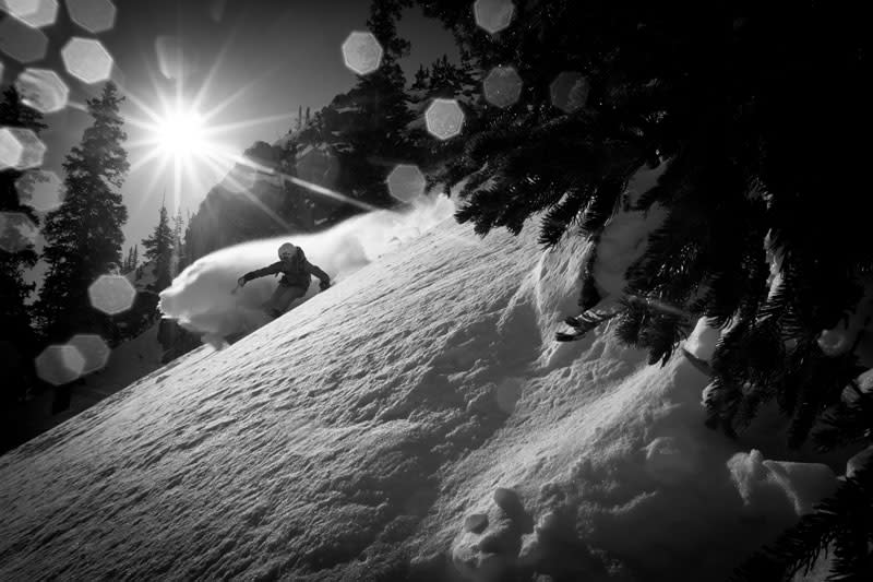 Black and white photo of a Snowbird skier dusting up snow with the sun over head