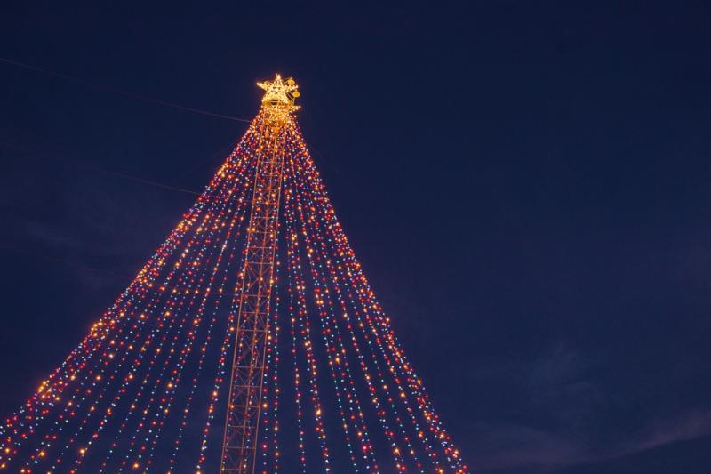 Zilker Tree at the Austin Trail of Lights