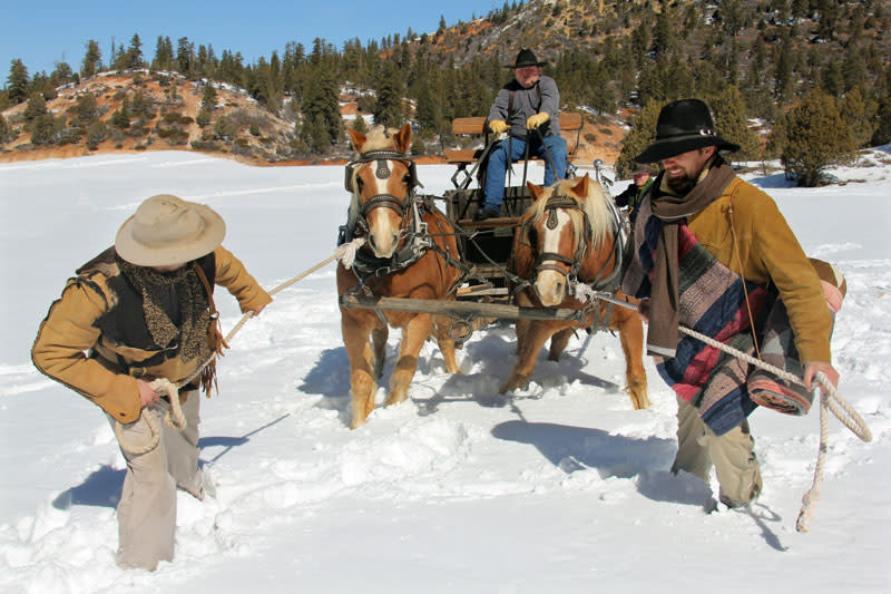pioneer wagon-snow