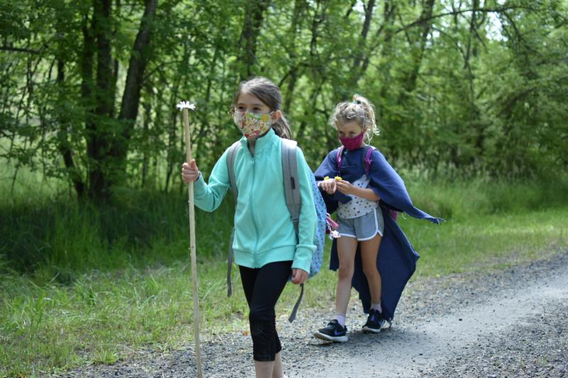 Hikers explore nature as part of Whole Earth Nature School 2020