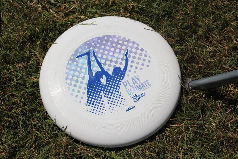 Summer Solstice Ultimate Frisbee by Joey Jewell
