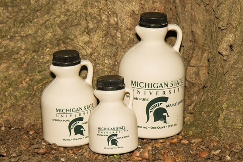 MSU Surplus Maple Syrup