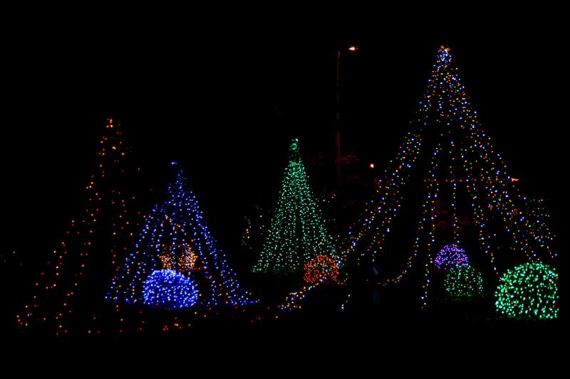 Wonderland of Lights at Potter Park Zoo