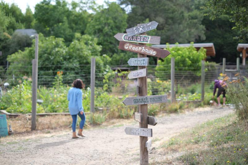Connolly Ranch Garden