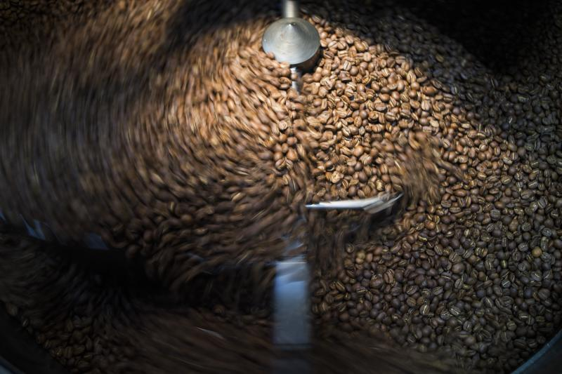 Fresh roasted coffee beans at Olympia Coffee Roasting Co.