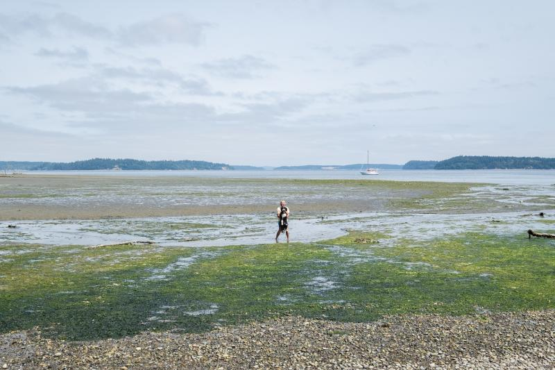 A dog and its owner explore low-tide at Tolmie State Park in Thurston County.