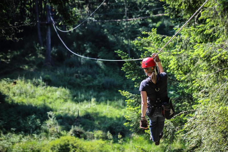 Zip Line through the forest in the Pacific Northwest