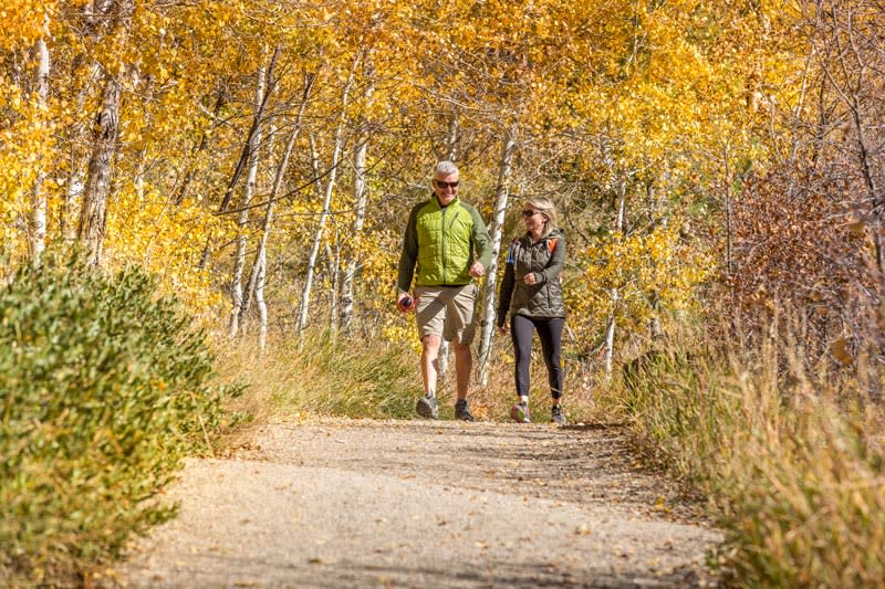 Hiking Spring Creek Trail in the Fall in Steamboat Springs Colorado