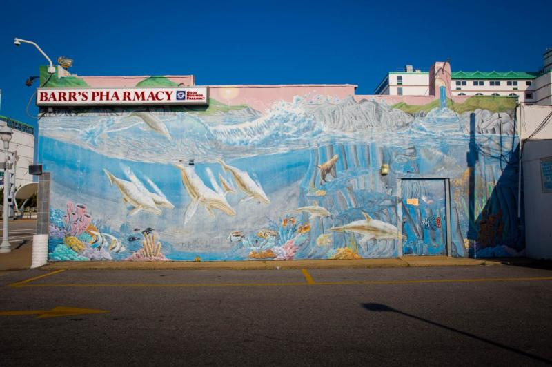 Where To Find The Most Colorful Walls In Virginia Beach