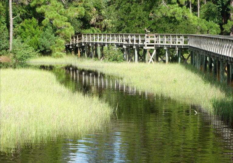Doris Leeper Spruce Creek Preserve