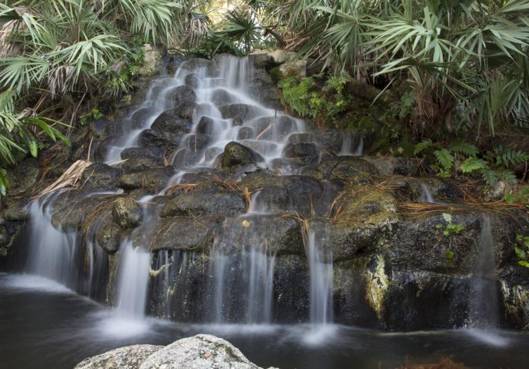 Ormond Memorial Art Museum and Gardens waterfall