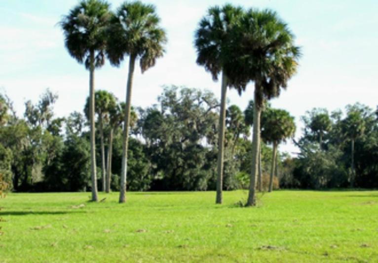 River City Nature Park
