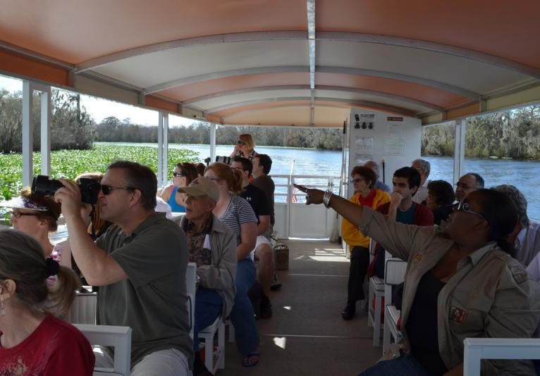 St. Johns River Eco Tour