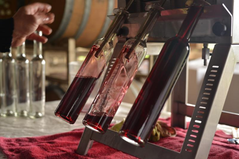 Saginaw Vineyards bottling by Melanie Griffin