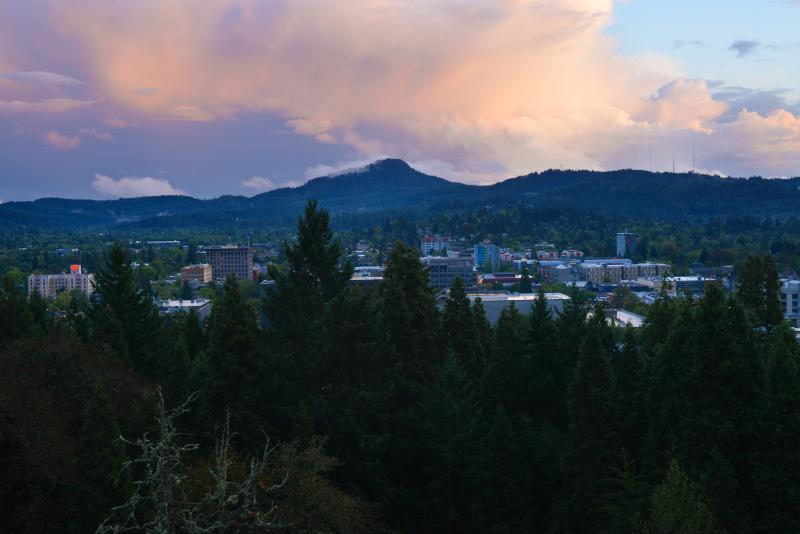 View from Skinner Butte by Melanie Griffin