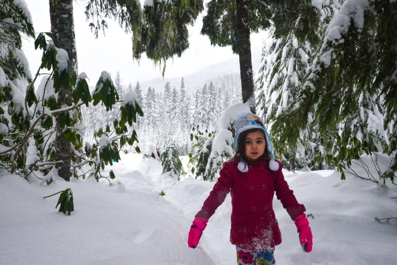 Salt Creek Sno-Park in winter by Melanie Griffin