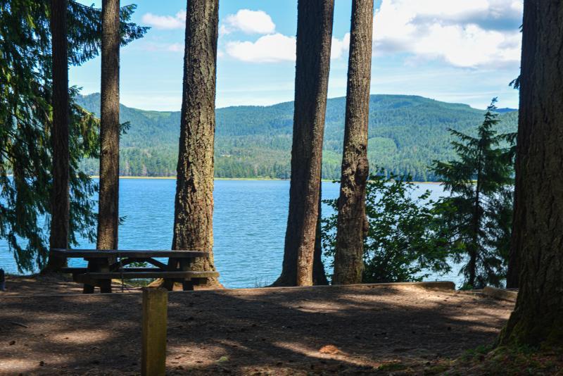 Baker Bay Campground by Melanie Griffin