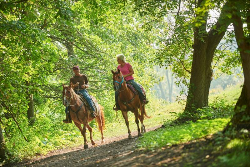 Sundance Riding Stables