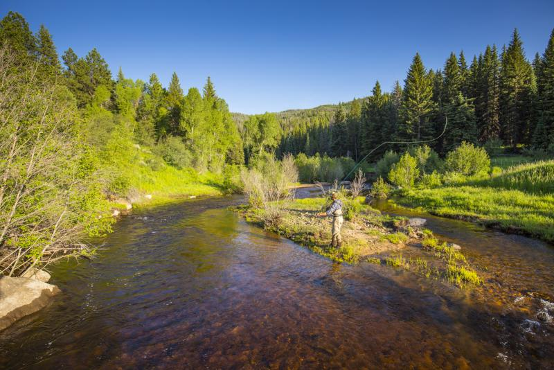 Fly Fishing Sarvis Creek