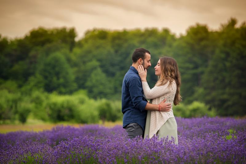 Proposal Couple in Lavender at Brys