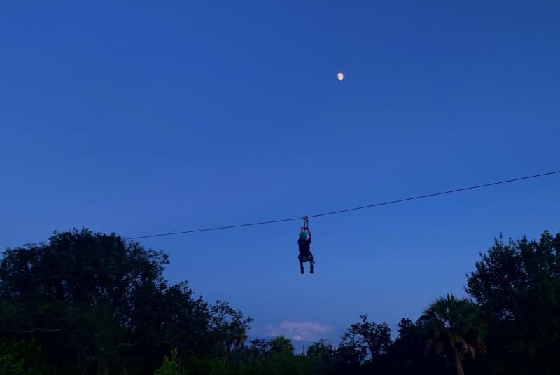 Moonlight Adventures!